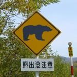 岩手県で10件目 男性がクマに襲われ大ケガ 顔や首に深い傷