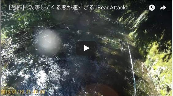 クマに襲われる動画 護身用品KSP