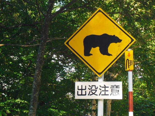 学校、保育園、幼稚園の熊、イノシシ、野犬対策
