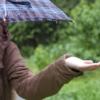 スタンガンの防水性能と雨や雪