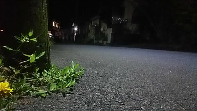 女性の夜道の一人歩き